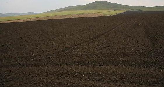 腐植酸对土壤的影响